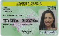 Example driver licence