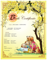 Image of Year of the Dog Chinese commemorative birth certificate
