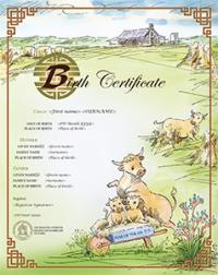 Chinese zodiac Year of the Ox commemorative birth certificate