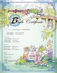 Chinese zodiac Year of the Rabbit commemorative birth certificate
