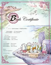 Chinese zodiac Year of the Rat commemorative birth certificate